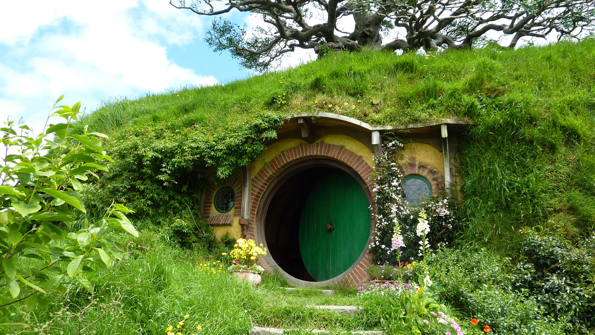 20 Things You Didn't Know About New Zealand Hobbit house