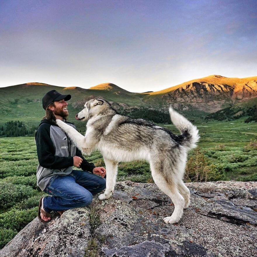 Loki the Wolfdog and Its Owner Share Incredible Adventures
