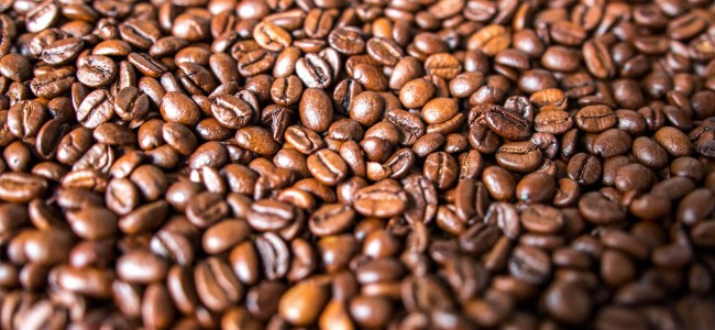 10 Most Expensive Coffee Beans in the World