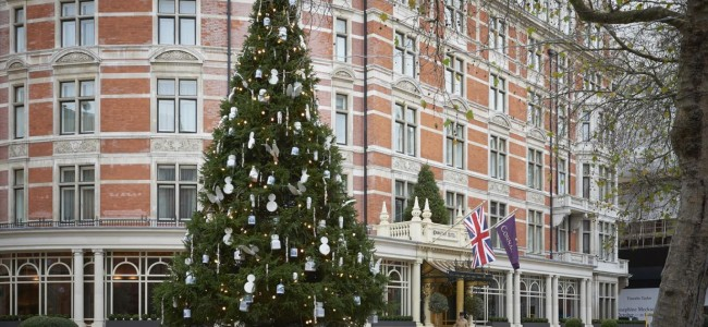 Top 5 Christmas Trees in London