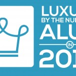 social alux 2015 infographic
