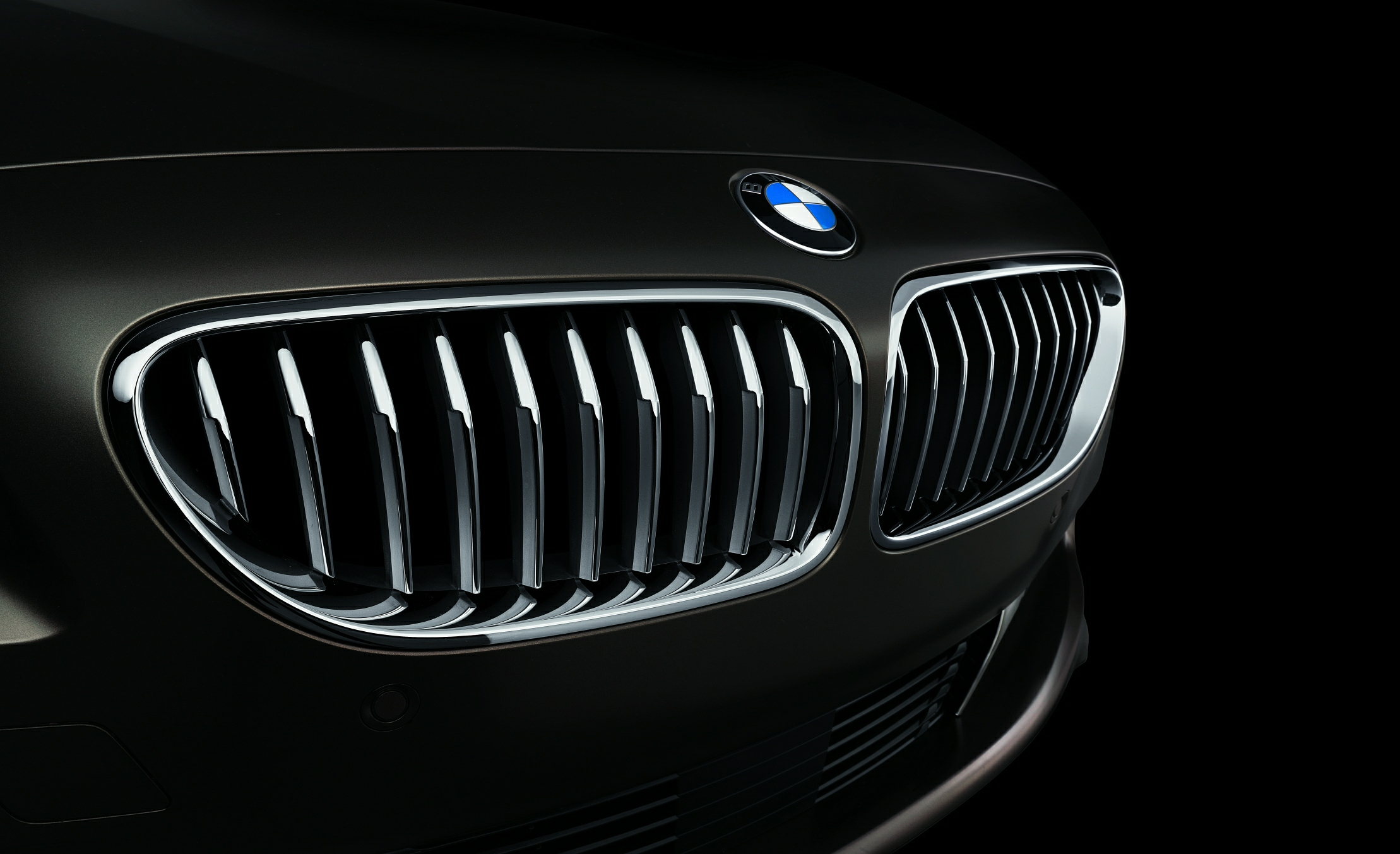 10 Things You Didn't Know About BMW | Kidney grills