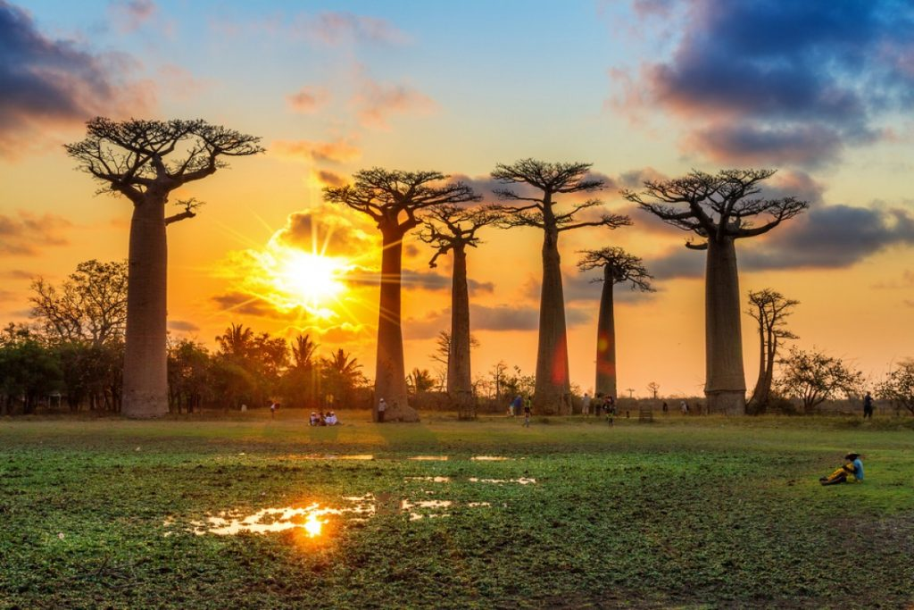 Top 15 Most Expensive Summer Destinations | #15. Madagascar ($255 per day)