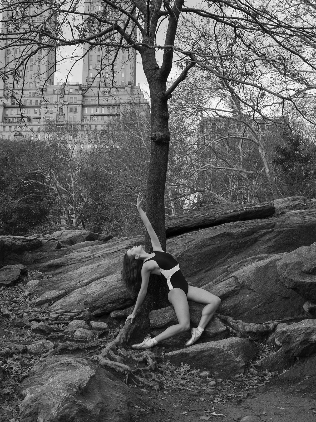 Ballerina Project - Nature