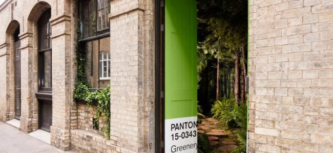 A Hidden Nature-Filled Home Created by Airbnb & Pantone You Must See!