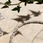 Boucheron's Lierre de Paris Collection Brings Homage to Nature's Triumphs (1)