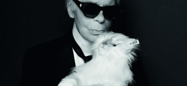 Karl Lagerfeld Teams Up with Steiff to Create a Stuffed Animal Version of His Cat!