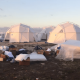 Fyre Festival is the place Where Live Music Turned into a Nightmare