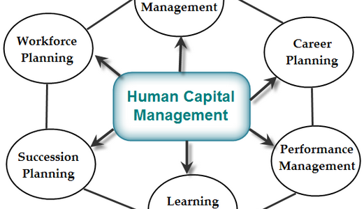 What are the issues and challenges facing by the Human Capital Management?