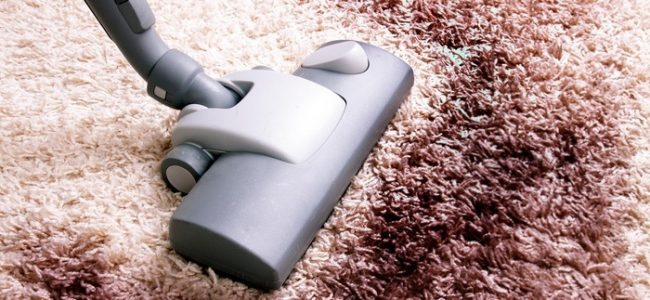Cheap Carpet Cleaners in Michigan for Professional Cleaning Service