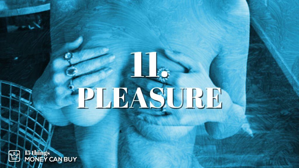 11 things money can buy - pleasure
