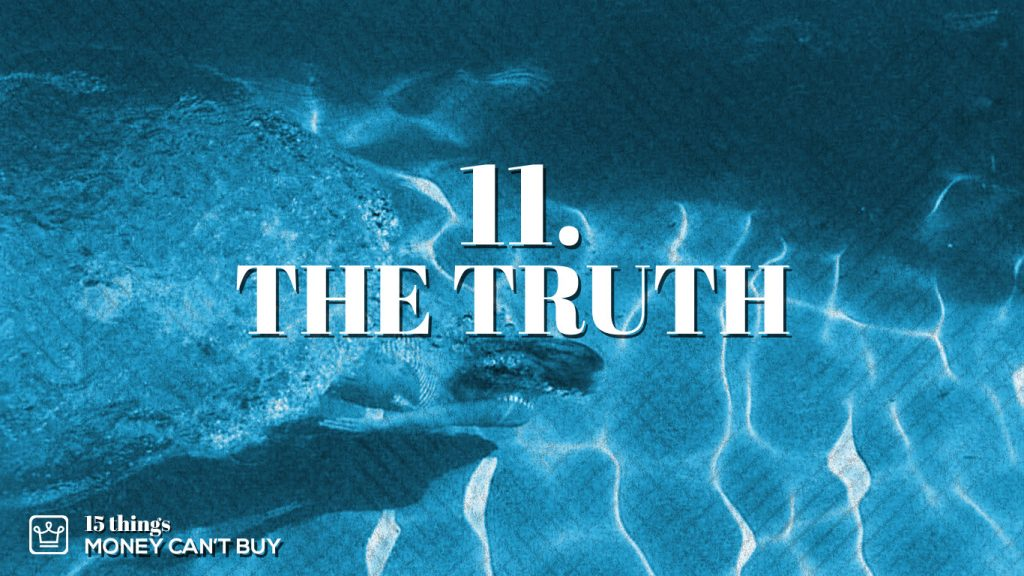 11 things money can't buy the truth alux