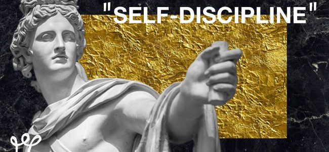 15 steps to master self discipline alux artwork
