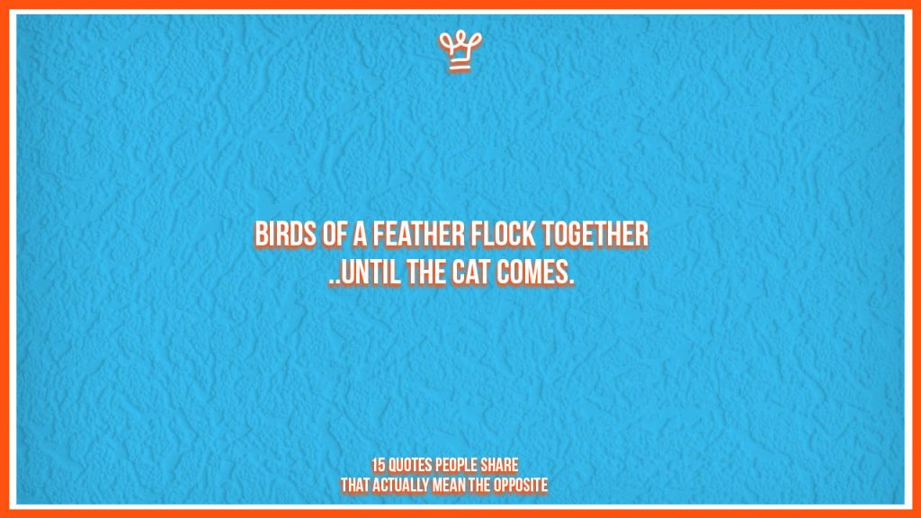 incomplete quotes people share - alux - Birds of a feather flock together until the cat comes