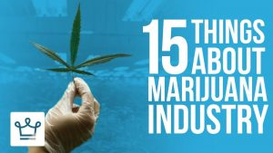 15 Things You Didn't Know About The Marijuana Industry