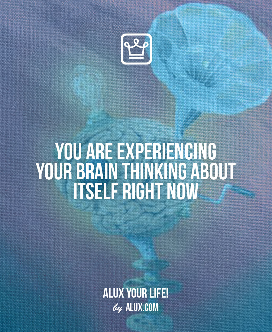 You are experiencing your brain thinking about itself right now Uncomfortable ideas that make you think