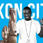 15 things you didn't know about Akon City